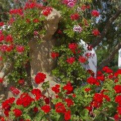 Отель FERGUS Conil Park Испания, Кониль-де-ла-Фронтера - отзывы, цены и фото номеров - забронировать отель FERGUS Conil Park онлайн фото 6