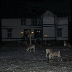 Sandtorgholmen Hotel фото 4
