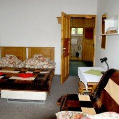 Отель Villa Cecylia Закопане комната для гостей фото 4