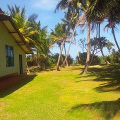 Отель Sunrise Beach Inn Шри-Ланка, Пляж Golden Mile - отзывы, цены и фото номеров - забронировать отель Sunrise Beach Inn онлайн