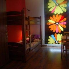 Very Berry Hostel Стандартный номер с различными типами кроватей фото 3
