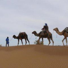 Отель Bivouac Jawhara Марокко, Мерзуга - отзывы, цены и фото номеров - забронировать отель Bivouac Jawhara онлайн пляж фото 2