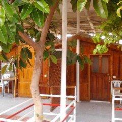 Отель Baba Motel фото 3