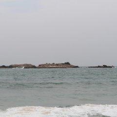 Отель Neem Tree Guest House пляж фото 2