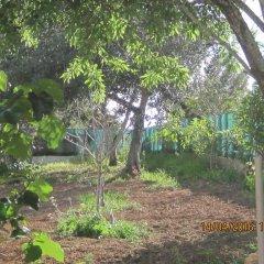 Отель Quinta da Fonte em Moncarapacho фото 2