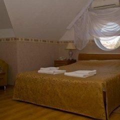 Гостиница Вилла Татьяна на Верхнеозёрной Стандартный номер с различными типами кроватей фото 14