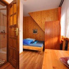 Отель Sfinks Польша, Закопане - отзывы, цены и фото номеров - забронировать отель Sfinks онлайн ванная