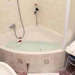 Hotel Vila Tina 3* Номер Делюкс с различными типами кроватей фото 13