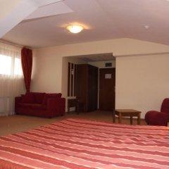 Отель Evelina Palace Hotel Болгария, Банско - отзывы, цены и фото номеров - забронировать отель Evelina Palace Hotel онлайн удобства в номере