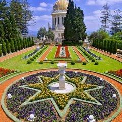 Eden Hahoresh Gueshoue Израиль, Хайфа - отзывы, цены и фото номеров - забронировать отель Eden Hahoresh Gueshoue онлайн детские мероприятия