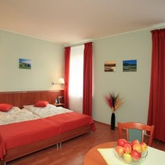 Отель Penzion Fan 3* Студия с двуспальной кроватью фото 16