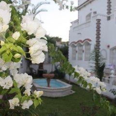 Отель Malabata Guest House Марокко, Танжер - отзывы, цены и фото номеров - забронировать отель Malabata Guest House онлайн фото 3