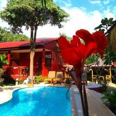 Отель Kantiang Oasis Resort And Spa 3* Номер Делюкс фото 43