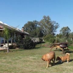 Отель Fish Eagles Lodge с домашними животными