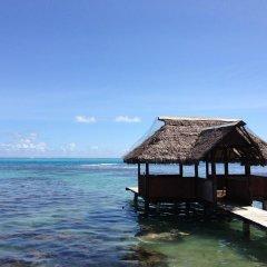 Отель Pension Motu Iti Французская Полинезия, Папеэте - отзывы, цены и фото номеров - забронировать отель Pension Motu Iti онлайн приотельная территория фото 2