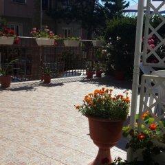 Отель Guest House Ioanna Болгария, Аврен - отзывы, цены и фото номеров - забронировать отель Guest House Ioanna онлайн фото 6