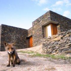 Отель InXisto Lodges с домашними животными