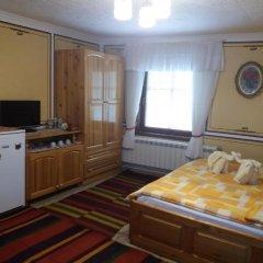 Отель Guest House Bashtina Striaha 2* Стандартный номер с различными типами кроватей фото 6