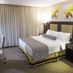 Olive Tree Hotel Amman 4* Стандартный номер с двуспальной кроватью