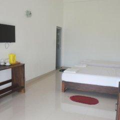 Отель Bird Scenery Номер Делюкс с различными типами кроватей фото 20