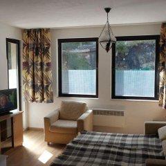 Апартаменты Christina Apartment In Laplandia Пампорово комната для гостей фото 5