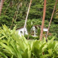 Отель The Remote Resort, Fiji Islands фото 9