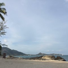Отель Private lodge beachside & pet for children Таиланд, Самуи - отзывы, цены и фото номеров - забронировать отель Private lodge beachside & pet for children онлайн пляж фото 2