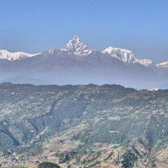 Отель Puskar Guest House Непал, Покхара - отзывы, цены и фото номеров - забронировать отель Puskar Guest House онлайн фото 3