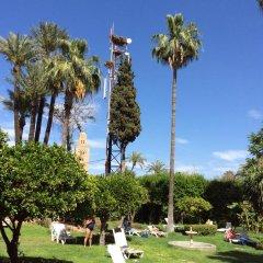 Отель Chems Марокко, Марракеш - отзывы, цены и фото номеров - забронировать отель Chems онлайн развлечения