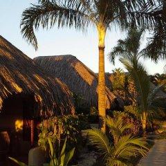 Отель Village Temanuata Французская Полинезия, Бора-Бора - отзывы, цены и фото номеров - забронировать отель Village Temanuata онлайн фото 28