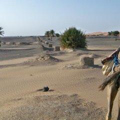 Отель Kasbah Tamariste Марокко, Мерзуга - отзывы, цены и фото номеров - забронировать отель Kasbah Tamariste онлайн пляж фото 2