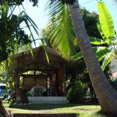 Pension Te Miti - Hostel Кровать в общем номере фото 6