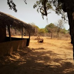 Отель Yakaduru Safari Village Yala фото 17