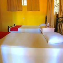 Reggae Hostel Ocho Rios Номер категории Эконом с различными типами кроватей фото 5