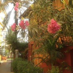 Calabash apartments in Kololi, Gambia from 77$, photos, reviews - zenhotels.com photo 8