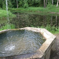 Гостиница Репинская бассейн
