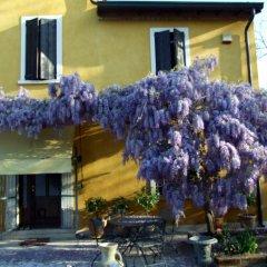 Отель B&B Casacasina Италия, Монцамбано - отзывы, цены и фото номеров - забронировать отель B&B Casacasina онлайн фото 2