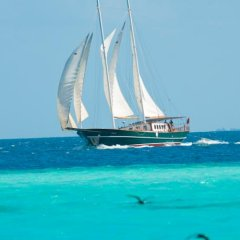 Dream Voyager Yacht in North Male Atoll, Maldives from 388$, photos, reviews - zenhotels.com beach