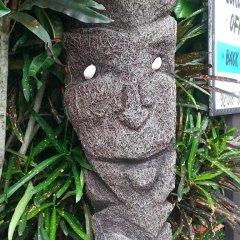 Отель Gecko Lodge Fiji Савусаву фото 7