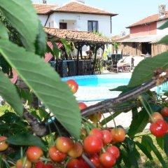 Отель Guest House Bai Petko Болгария, Хисаря - отзывы, цены и фото номеров - забронировать отель Guest House Bai Petko онлайн бассейн фото 3