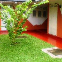 Отель Green Garden Guest House Шри-Ланка, Берувела - 1 отзыв об отеле, цены и фото номеров - забронировать отель Green Garden Guest House онлайн фото 8