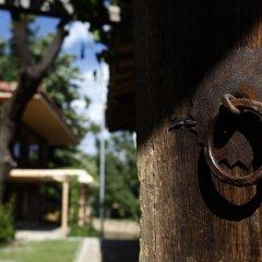 Отель Zlatna Oresha Guest House Болгария, Сливен - отзывы, цены и фото номеров - забронировать отель Zlatna Oresha Guest House онлайн фото 8