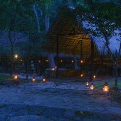 Отель Ella Jungle Resort Шри-Ланка, Бандаравела - отзывы, цены и фото номеров - забронировать отель Ella Jungle Resort онлайн бассейн фото 2