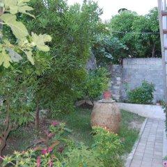 Отель Guesthouse Kadiu Berat Албания, Берат - отзывы, цены и фото номеров - забронировать отель Guesthouse Kadiu Berat онлайн фото 5