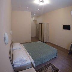 Гостиница Алпемо Стандартный номер с различными типами кроватей фото 2