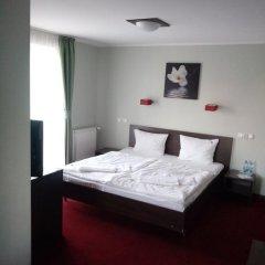 Отель Dworek Pani Walewska Стандартный номер с различными типами кроватей фото 5