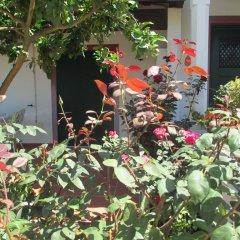 Отель Casa Do Limoeiro фото 8