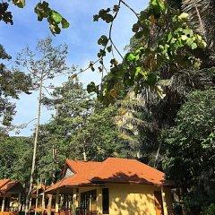 Отель Tonsai Bay Resort фото 12