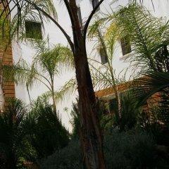 Alecos Hotel Apartments фото 13