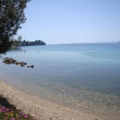 Отель Para Thin Alos Греция, Ситония - отзывы, цены и фото номеров - забронировать отель Para Thin Alos онлайн пляж фото 2